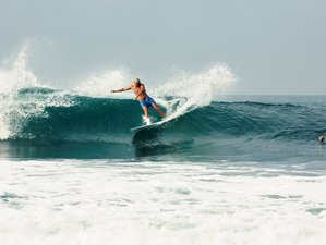 8 Days Beginner Surf Camp in Kerobokan, Badung, Bali