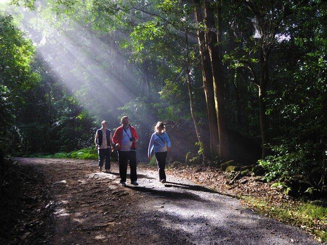 12 Days Cleanse Detox Retreat in NSW