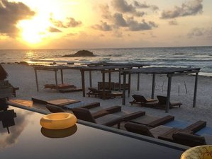 6 Days Yoga Retreat in the Paradise of Tulum, Mexico