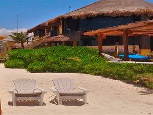 12 Days 100 Hours Fascia, Function, Qi, and Yin Yoga Teacher Training in Playa del Carmen, Mexico