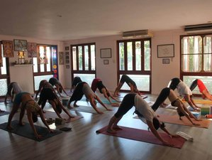 10 Day Intensive Ashtanga Yoga Retreat in Chalong, Phuket