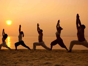 27 Days 200-Hour Yoga Teacher Training in Goa India