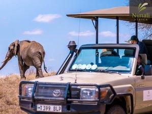 11 Days Exciting Wildlife Safari Tour in Tanzania