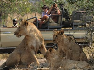 2 Days Amazing Safari in Zambia