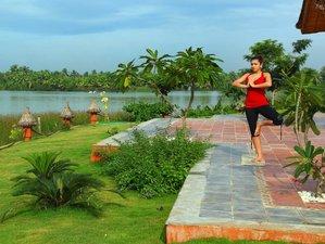 8-Daagse Ayurveda Meditatie en Yoga Retraite in Kerala, India