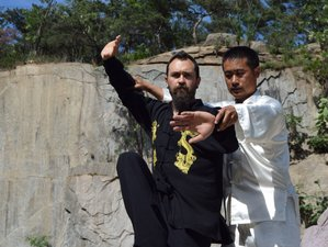 2 Month One-on-One Online Kung-Fu Training Course