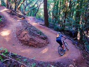 4 Day Singletrack Bike Tour in Northern California