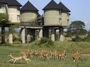 2 Days Road Safari in Kenya