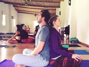 7 Day Intensive Detox, Meditation, and Yoga Retreat in The Mayacamas Mountains, California
