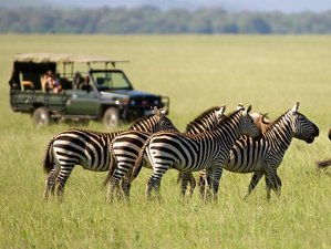 2 Days Mt Longonot Hike and Lake Naivasha Wildlife Safari in Kenya
