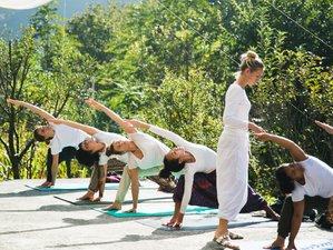 32 Days 300-Hour Yoga Teacher Training In Auroville, South India