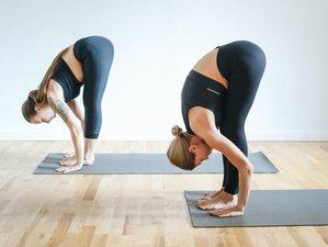 6 Tage Yoga Retreat mit Privatyoga und Wellnessanwendungen im Yogahotel Hof Kranichstein, Rügen