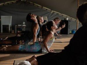 4 Day Dharma Yoga Retreat by the Sea in Formentera, Balearic Islands