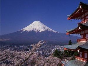8 Days Spring Culinary Tour Japan