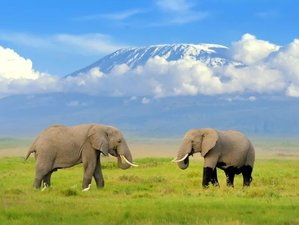 2 Days Budget Safari in Amboseli National Park, Kenya