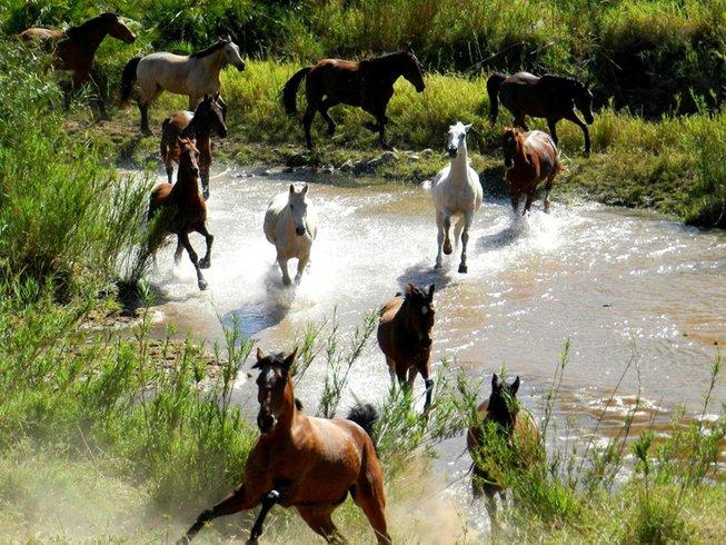 6 Days African Horseback Safari. 6 Days African Horseback Safari   BookAllSafaris com
