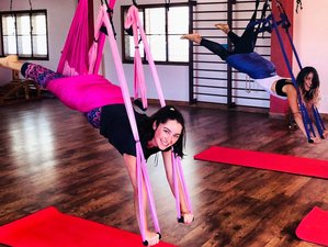 Self-paced 50-Hour Online Aerial Suspension Yoga™ Teacher Training