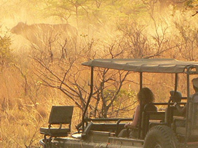 8 Days Fly Me Around Botswana Safari