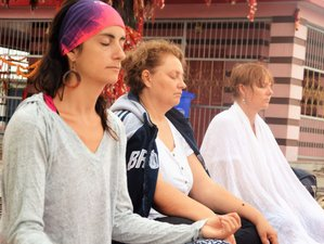 8 Days Vipassana Silent Meditation Retreat in Rishikesh, India