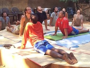 27 Days 200-hour Yoga Teacher Training in Dharamsala, India