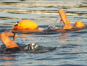 5 Day Open Water Swimming Retreat in Bridport, Dorset