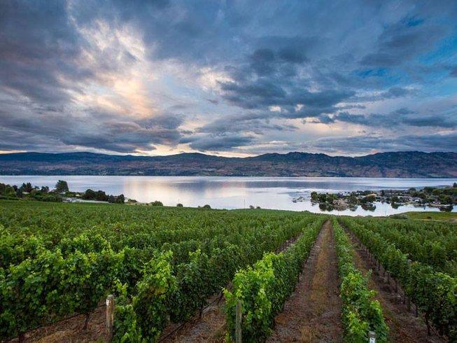 3 Days Wine Tasting in Canada