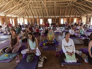 3 Days Silent Meditation and Yoga Retreat in Mexico