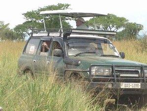 8 Days Gorilla and Chimpanzee Trekking Safari in Rwanda and Uganda