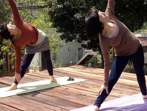 2 Days Meditation and Yoga Retreat in Nishiawakura  (Okayama prefecture), Japan
