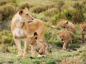 3 Days Adventure Tour and Meru National Park Safari in Kenya