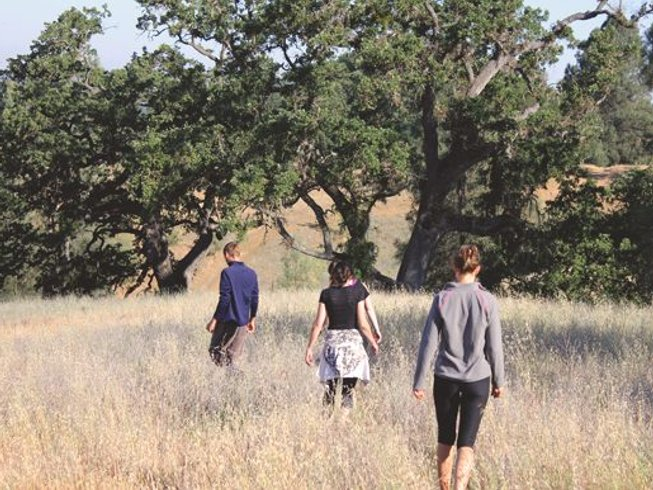 4 Days Yoga and Hiking Retreat in California, USA