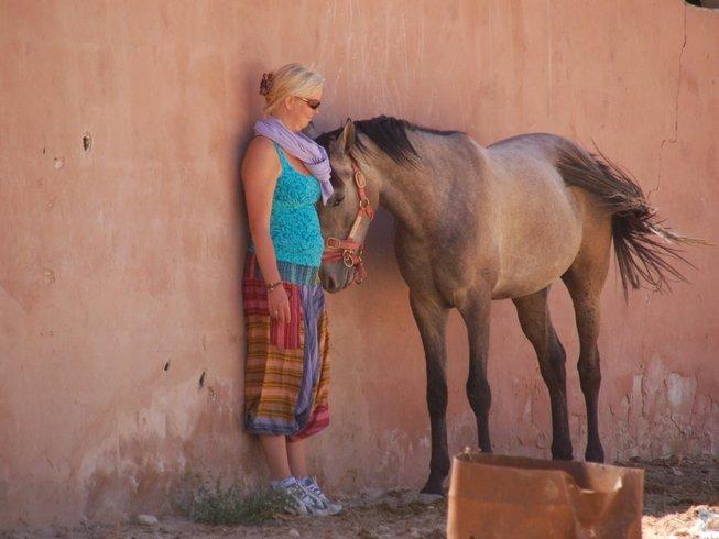9 Days Jordan Ancient Horse Retreat with Sandra Wallin