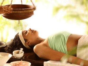 12 días vida en un ashram, curso de Ayurveda y retiro de yoga en India