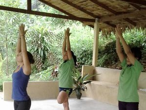 7 Days Meditation and Yoga Retreat in Chumphon, Thailand