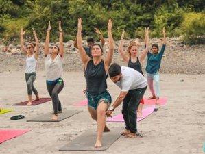 14 Days 100-Hour Yoga Teacher Training in Rishikesh, India