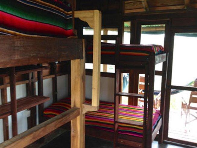 8 Days New Living Yoga Retreat in Costa Rica