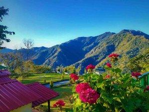 6 Day Spiritual Yoga Meditation & Bhagavad Gita Retreat in the Serene Mountains of Rishikesh