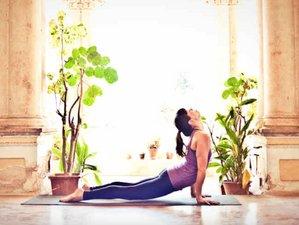 8 Days Ashtanga Yoga Retreat in Lourinha, Portugal
