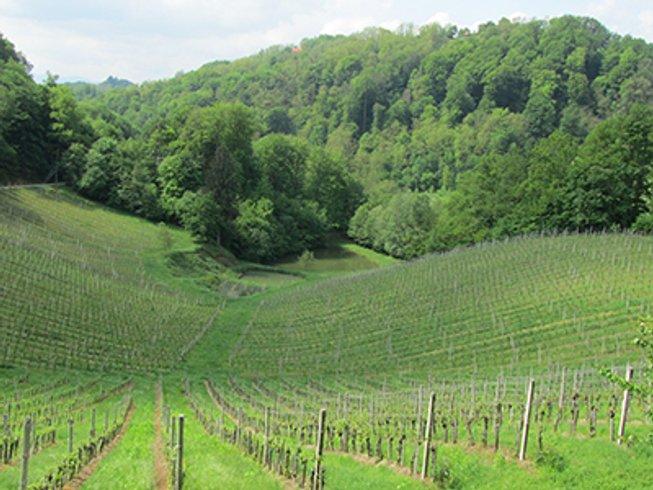 8 Days Food Tour and Wine Tasting Slovenia