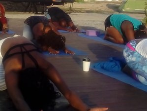 15 Days Heart Reset to Realize Your Dreams Yoga & Meditation Retreat in Portland, Jamaica