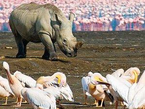 9 Days African Wildlife Safari in Kenya