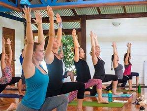 29 Day 300 Hours Yoga Teacher Training in Puerto Jiménez