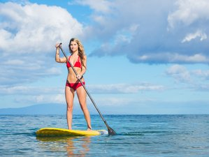 7 Days Fitness, SUP, and Surf Camp in Costa Rica