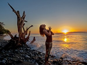 10 Days Cosmic Heart Yoga Retreat in Costa Rica
