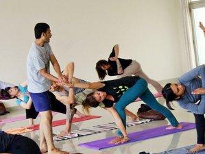 11 Days 100-Hour Hatha & Ashtanga Vinyasa Yoga Teacher Training Rishikesh India