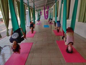 6 Day 50-Hours Aerial Yoga Teacher Training in Rishikesh