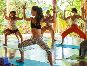 22 Days Body Transformation Weight Loss Detox And Yoga Retreat In Guanacaste