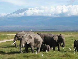 3 Days Ultimate Adventure Safari in Amboseli National Park in Kenya