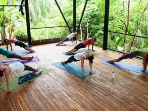5 Day Unbeatable Surfing and Yoga Holiday in Santa Teresa, Puntarenas
