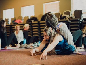 3 Days Adult Fitness and Yoga Camp in California